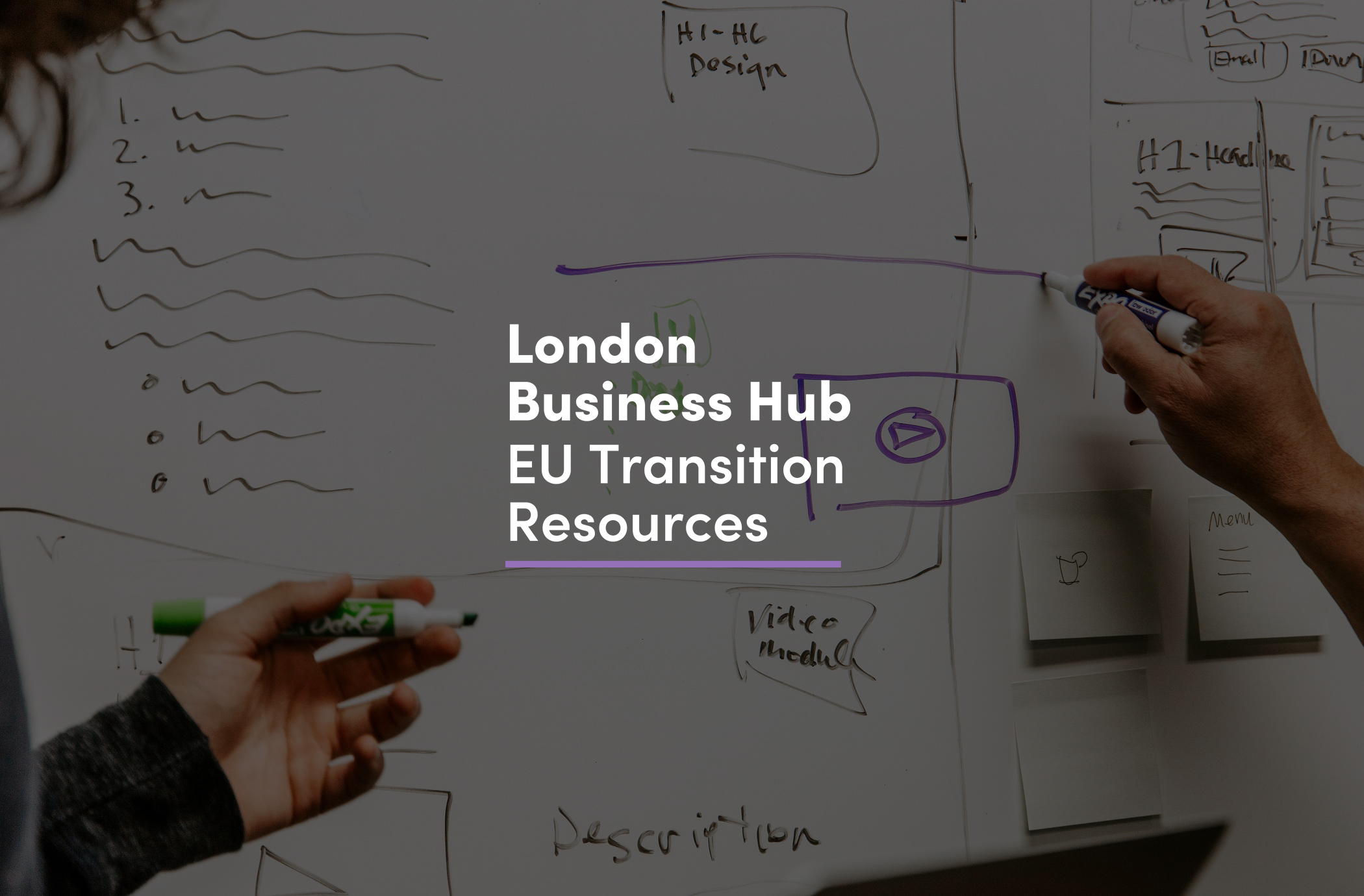 EU Transition Business Resource Hub