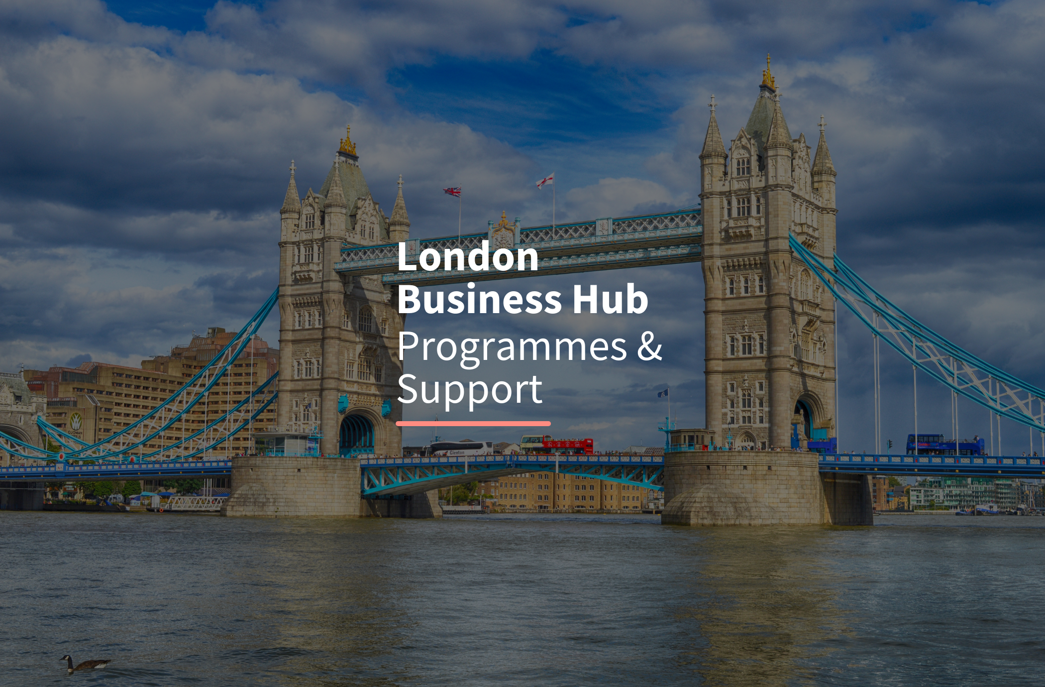 Support from London Business Hub
